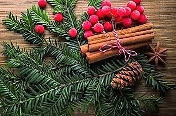 A Christmas pine bough with berries, cinnamon and pinecone.